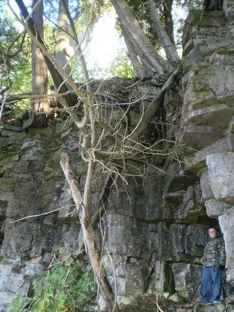 Eagle Trail: Below the bluffs