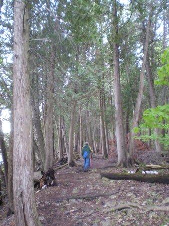 Eagle Trail Picture Of Eagle Trail Fish Creek Tripadvisor