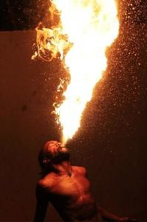 Coconut Palms Resort : Fire show at coconut palms