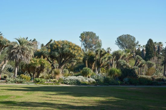 The Huntington Library, Art Collections and Botanical Gardens: Boundary of the Desert Garden