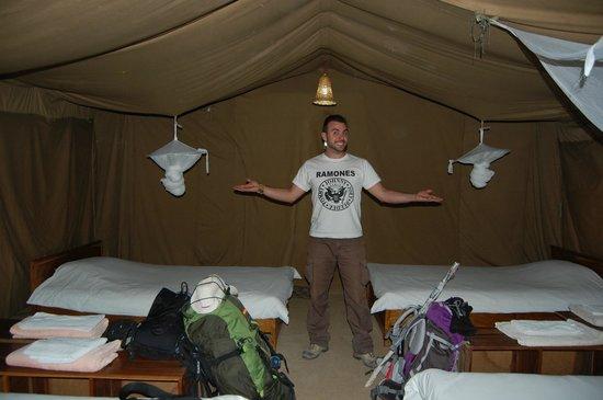 Ikoma Safari Camp: interior de la cabaña