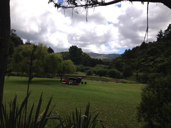 Kauri Coast Top 10 Holiday Park : unpowered sites