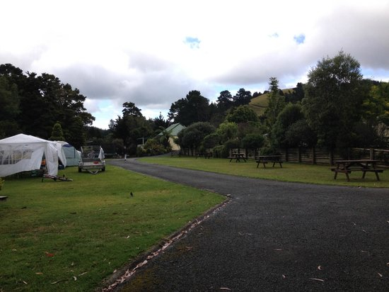 Kauri Coast Top 10 Holiday Park: powered sites
