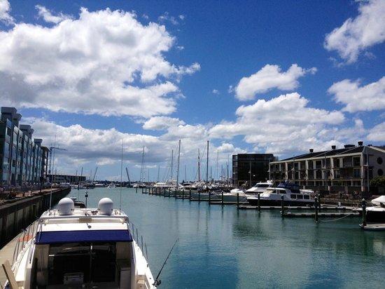 Sofitel Auckland Viaduct Harbour: The marina