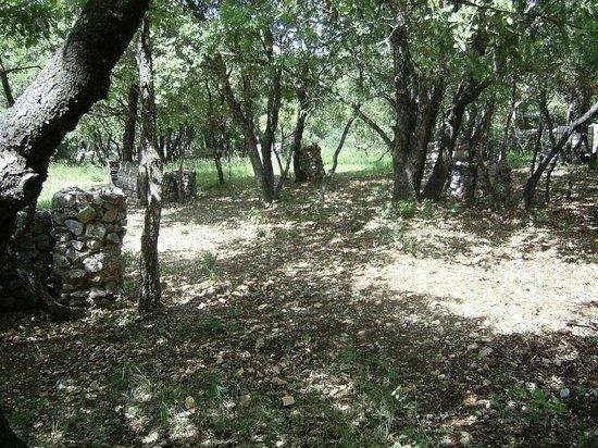 Paintball Ardèche : Une partie du terrain