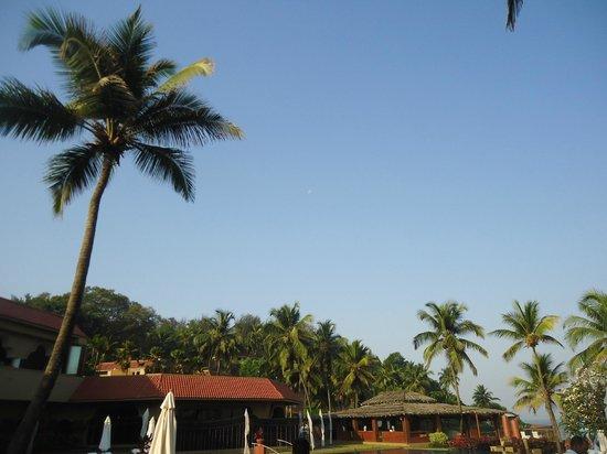 Taj Fort Aguada Resort & Spa, Goa: View from the room 2