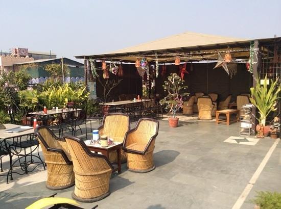 Hotel Kalyan : terrace su jaipur