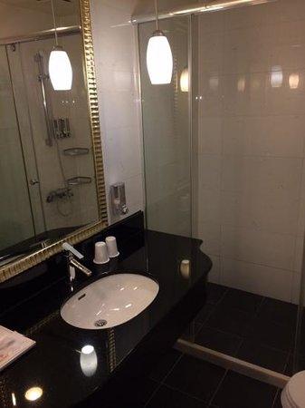 Fullon Hotel Sanyin: Bathroom