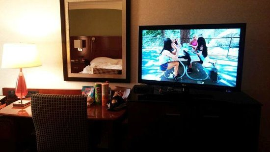Ann Arbor Marriott Ypsilanti at Eagle Crest: Nice, big flatscreen with HD