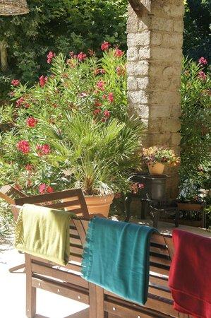 Le Moulin des Pinchinats : petit dejeuner sur la terrasse