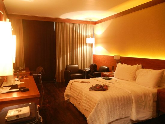 Le Meridien New Delhi: Room
