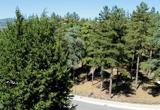 Albergo Ristorante Parco : paesaggio dal balcone