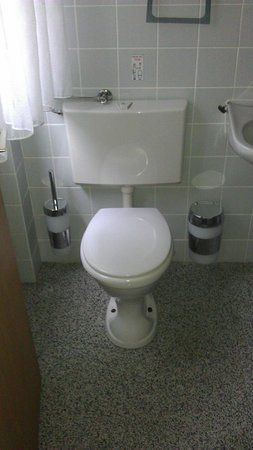 Pension Am Waldrand: WC + Badbereich Zimmer 3