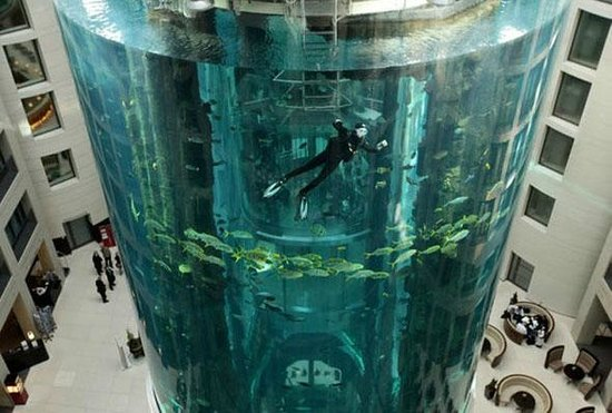 Radisson Blu Hotel, Berlin: Тот самый аквариум в холле