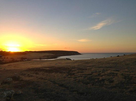 Waves and Wildlife Cottages: sunset views