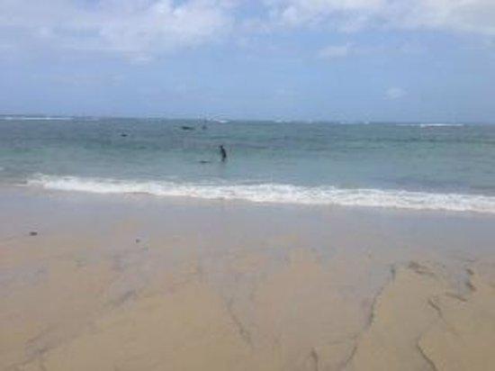 Changani Beach Cottages: beach