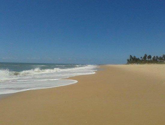 Sauipe Resorts : Praia deserta e tranquila para caminhada
