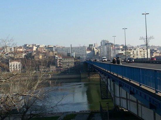 Sava River: Бранков мост через Саву