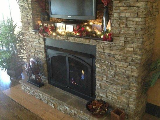 Comfort Inn Biltmore West: fireplace