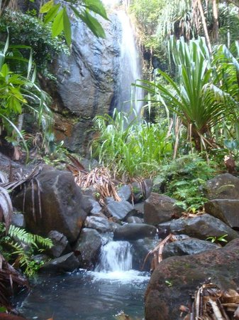 Coco Bay Villa: The waterfall near Valle de Mai