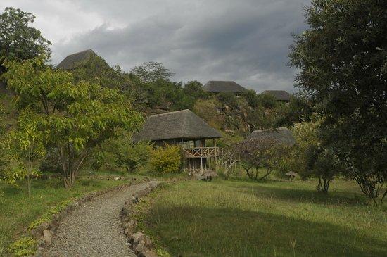 Sunbird Lodge: Rooms viewed from below