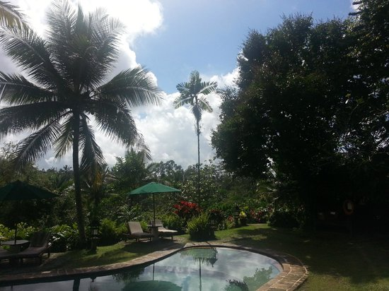 Alam Sari: Very tropical