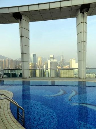 Metropark Hotel Causeway Bay Hong Kong: Rooftop pool