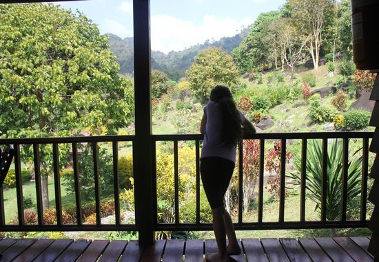 Phanom Bencha Mountain Resort: Balcony