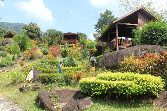 Phanom Bencha Mountain Resort: The mountain