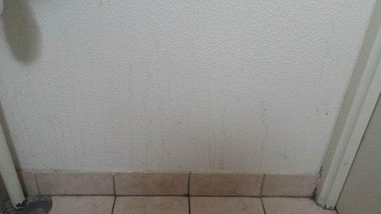 Magny Le Hongre Marne la Vallee: parete sporca toilet piano terra