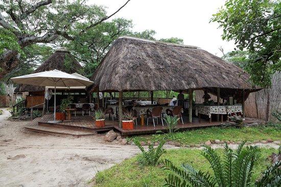 Tembe Elephant Park Accommodation: Restaurant