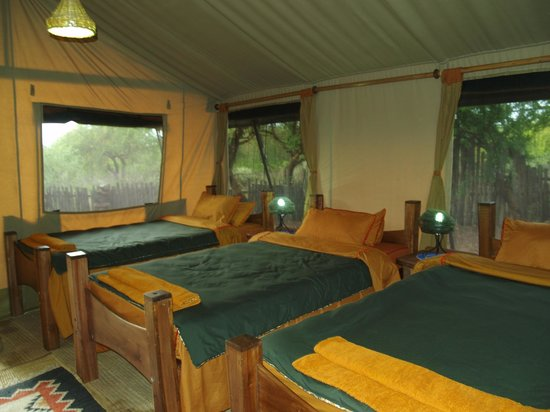 Bush 2 Beach Safaris - Day Tours: Tented lodge at Isoitok