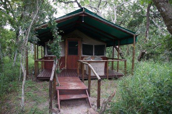 "Tembe Elephant Park Accommodation: Onze ""tent"""
