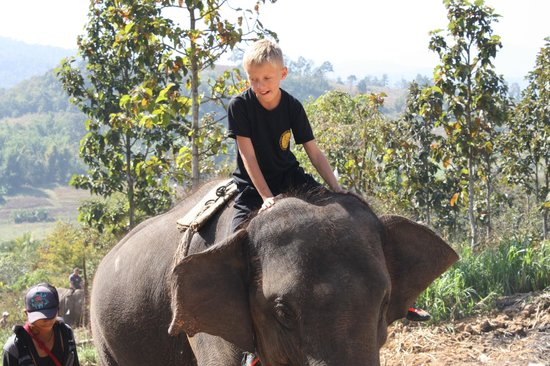 Secret Garden Chiang Mai : Eddy's Elephant Care