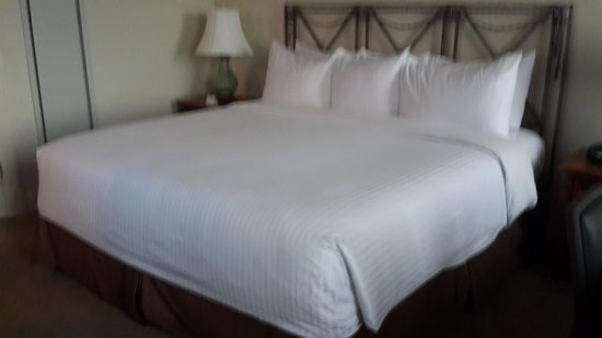 Hotel Lombardy: Especially loved coming back to this comfortable bed at the end of each day!