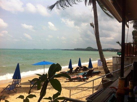 Florist Resort : Stranden