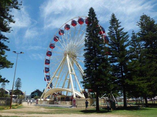 Fremantle Esplanade: Observation Wheel