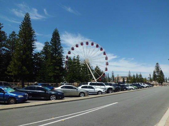 Esplanade Park: Observation Wheel
