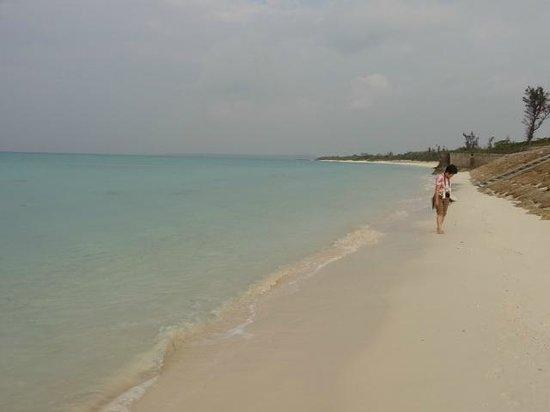 Marine Lodge Marea: 朝の散歩