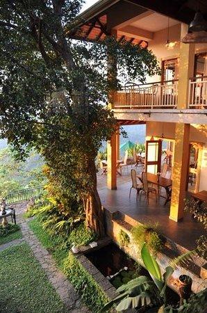 Villa Rosa: main residence