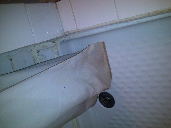 Hotel des Arcades : Shower curtain