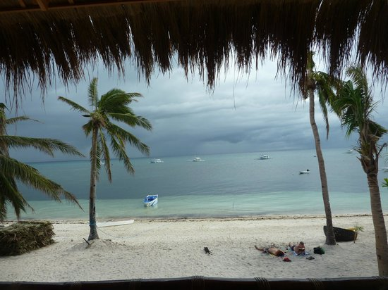 Ocean Vida Beach & Dive Resort : View from breakfast area