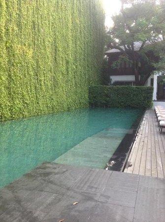 137 Pillars House: serene pool