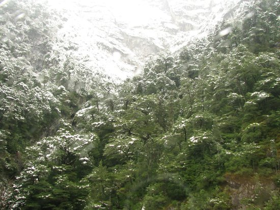 Hotel Natura Patagonia: Proximidades do Hotel