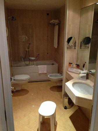 Hotel Artemide : 浴室