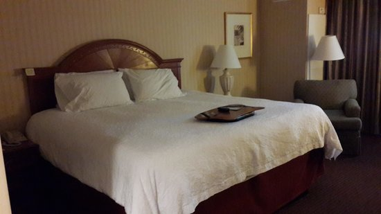 Hampton Inn NY - JFK: foto do quarto