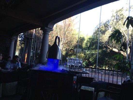 Sala: La obscuridad del lugar da resalte a la mesita de los gin & tonic.