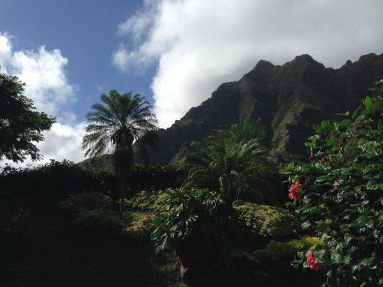 Discover Hawaii Tours: Windward Oahu