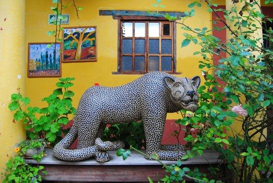 Na Bolom Cultural Centre: il giaguaro