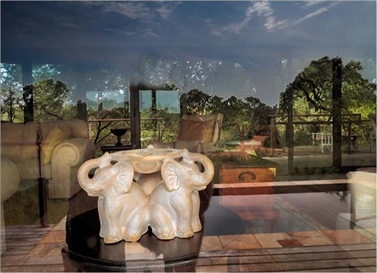 The River Lodge at Thornybush: Decor Abstract